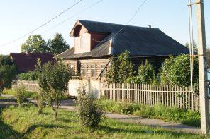 Приют в Клинском районе