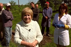 Нешукшинский рассказ, или как бездомным выбрать деревню на жительство